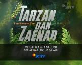 Tarzan dan Zaenab